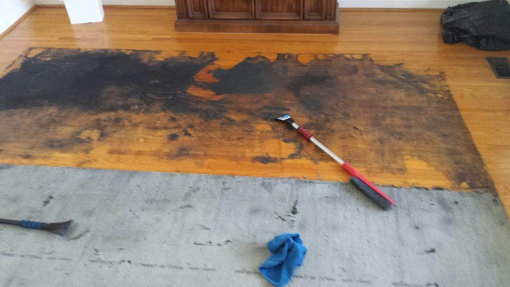 ice scrapers, hardwood floor and carpet underpad